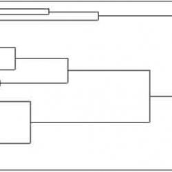 classification-3.jpg